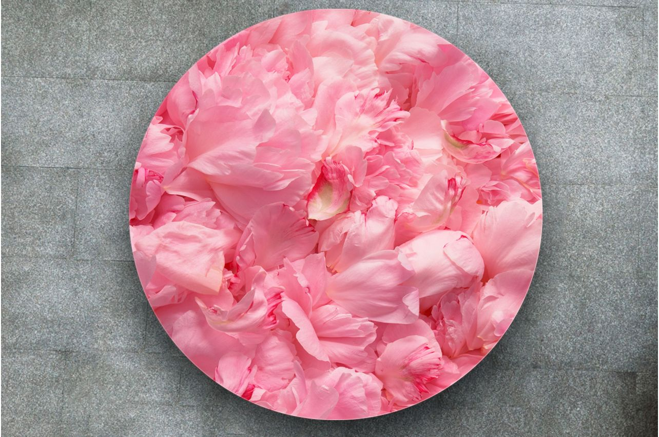 Table Decals - Petals | Buy Table Decals in x-decor.com