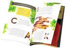 книга - копчение с дымогенератором