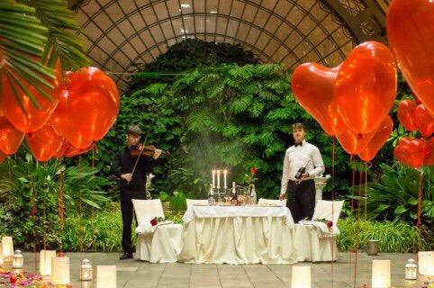 свидание в оранжерее