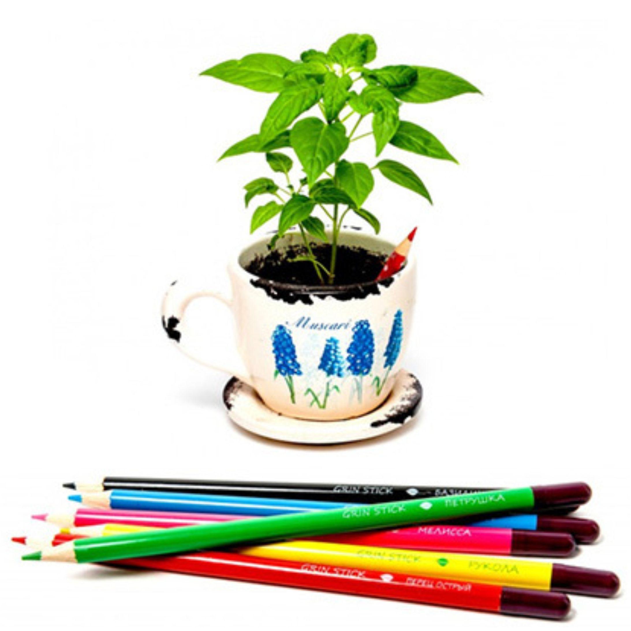 растущие карандаши с логотипом
