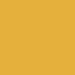 U163 ST9 Карри жёлтый