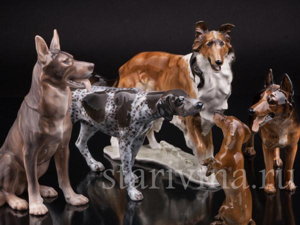 Фарфоровые статуэтки собак фото