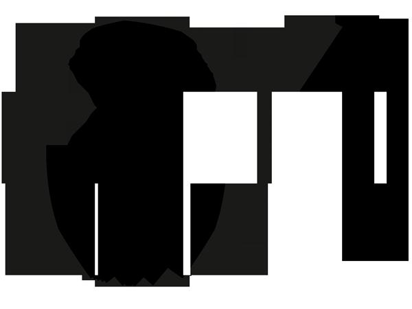 Торцевая заглушка настенной направляющей