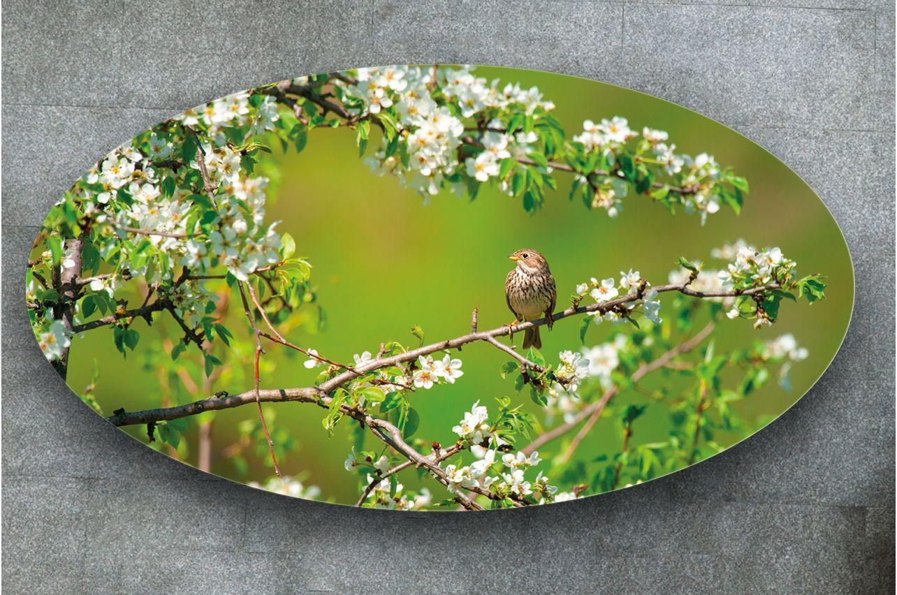 Наклейка на стол - В ожидании | Купить фотопечать на стол в магазине Интерьерные наклейки
