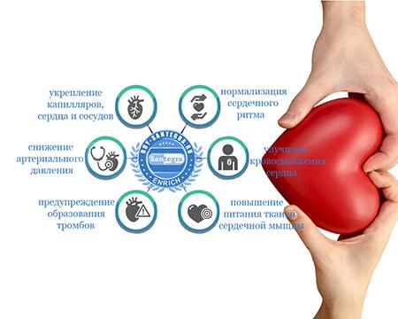 Биодобавки для сердца и сосудов компании Сантегра
