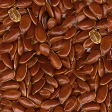 Урбеч из семян льна полезные свойства