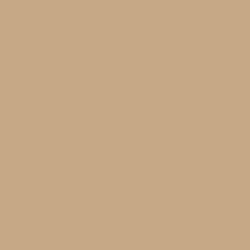 U204 ST9 Камель коричневый