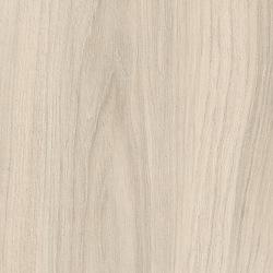 H3760 ST29 Вяз Капский белый