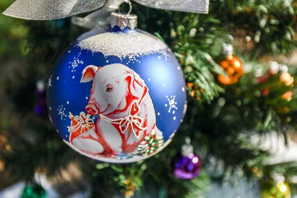 https://st.storeland.ru/7/2356/326/7_Christmas-present.ru.jpg