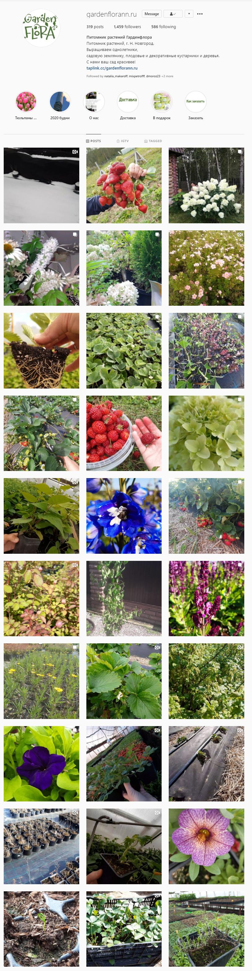 Скриншот странички из Instagram Питомника растений Гарден флора