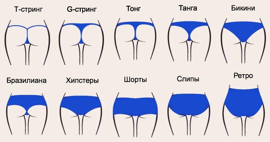 Виды женских трусиков в одной картинке
