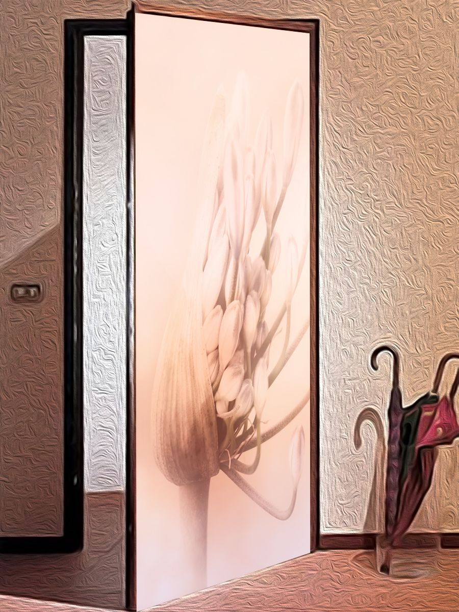 Наклейка на дверь - Пробуждение | магазин Интерьерные наклейки