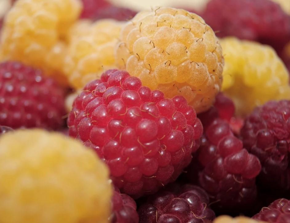 ягоды жёлтой и красной малины
