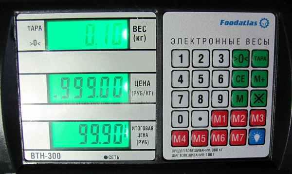 Дисплей торговых напольных весов FoodAtlas BTH-300