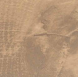 Q3309 RO Дуб Гладстоун песочный