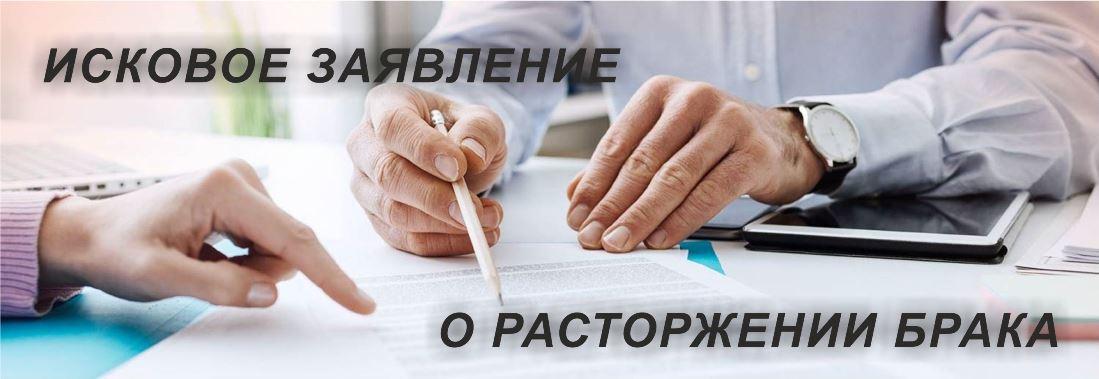 Тульская метро - Исковое заявление о расторжении брака