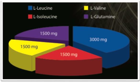 круговая диаграмма соотношения аминокислот в WEIDER Premium BCAA