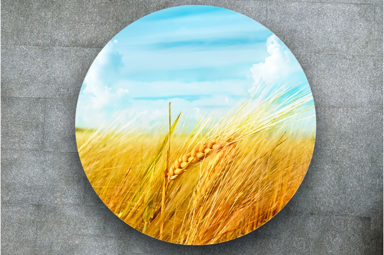 Stickers a Table - breadbasket | Buy Table Decals in x-decor.com