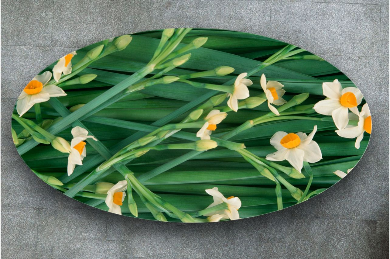 Stickers a Table - Daffodils | Buy Table Decals in x-decor.com