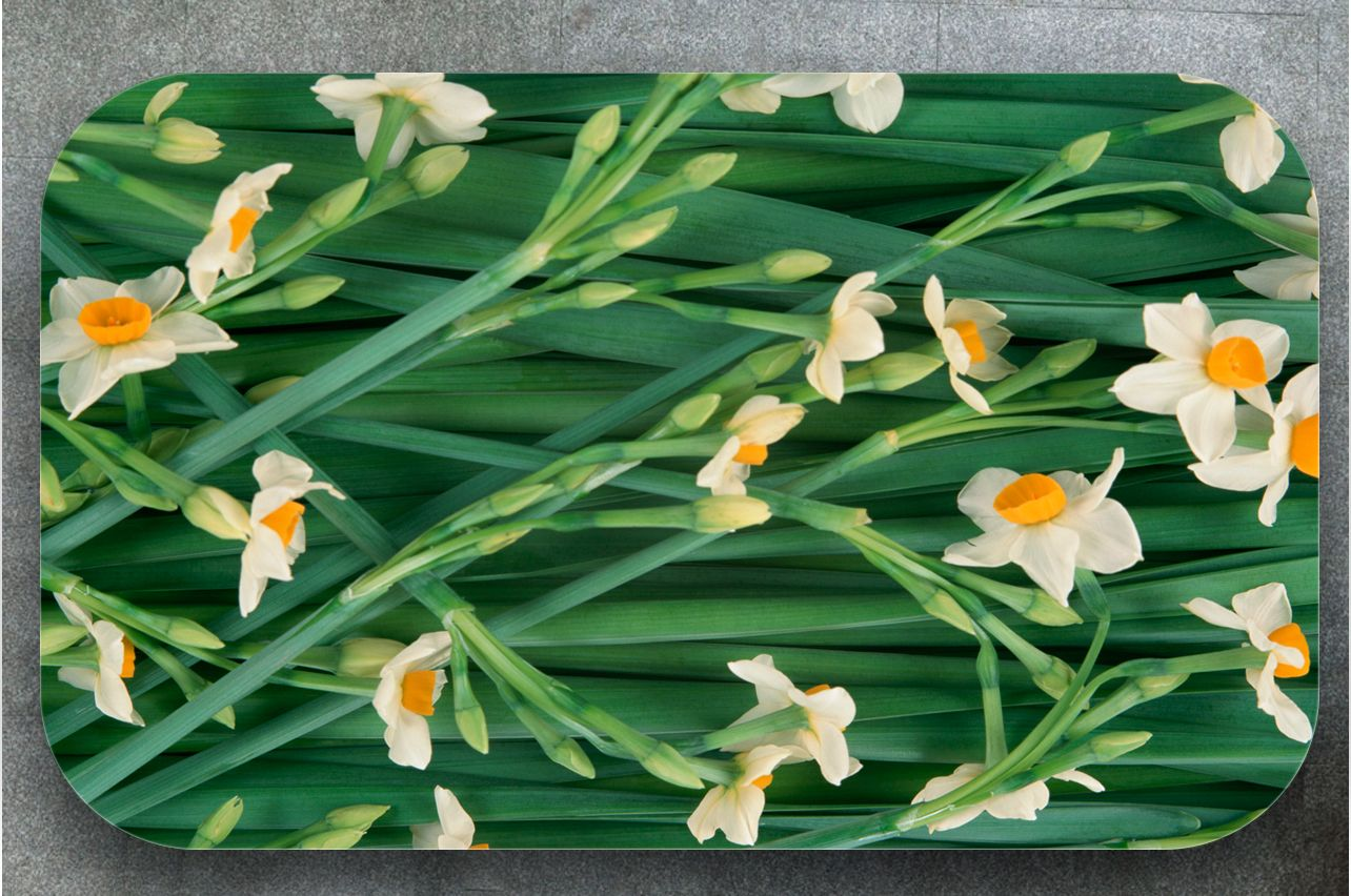 Stickers a Table - Daffodils | Buy Table Decals in x-decor.comи