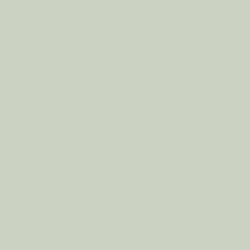 U608 ST9 Зелёный фисташковый