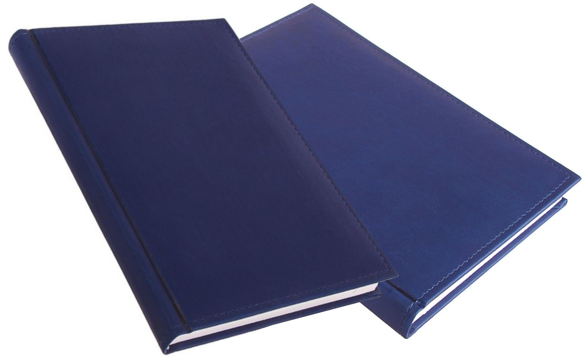 синие ежедневники