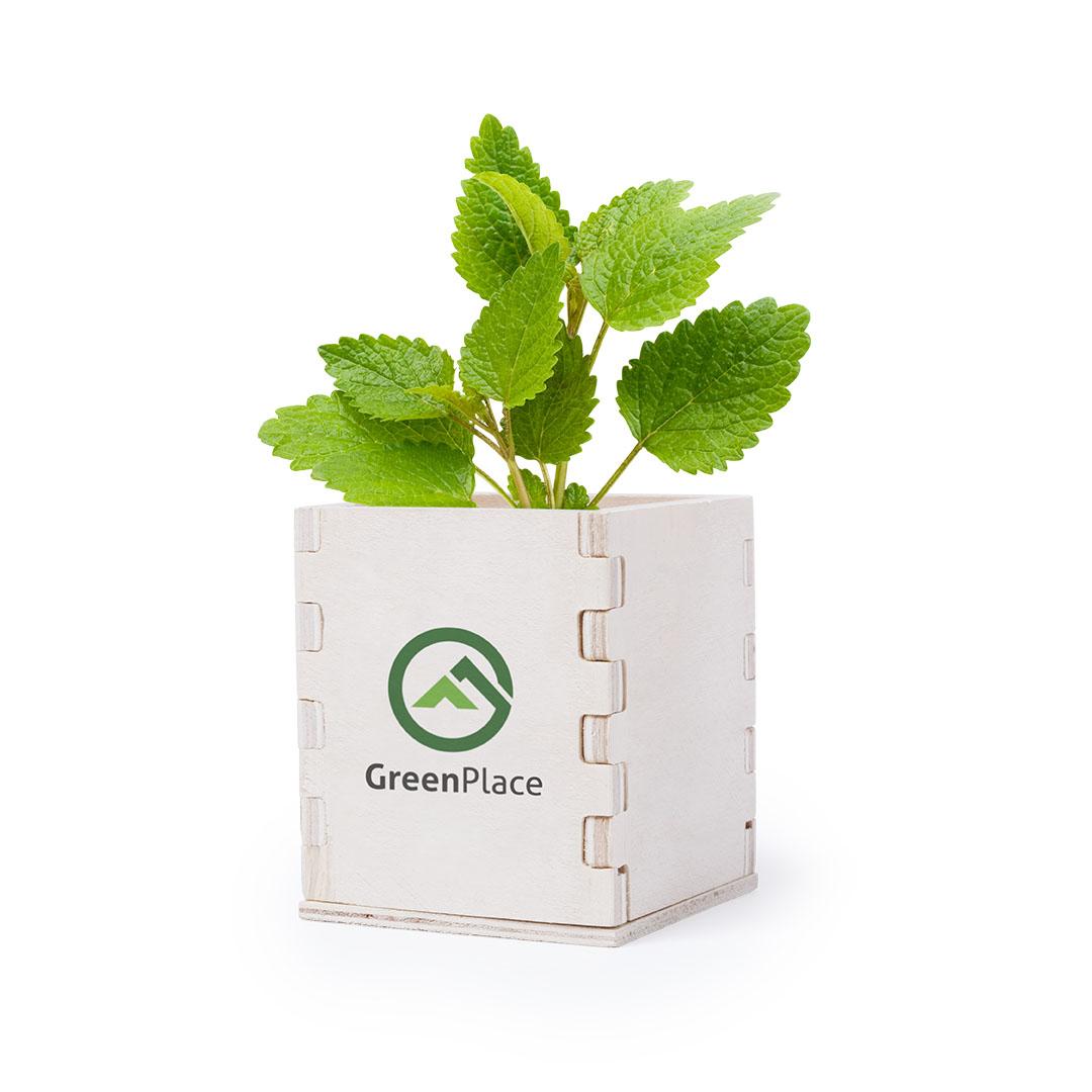 наборы для выращивания с логотипом